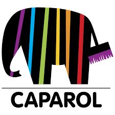 Indigo Deco - Caparol - Peintures professionnelles intérieures et extérieures de qualité!